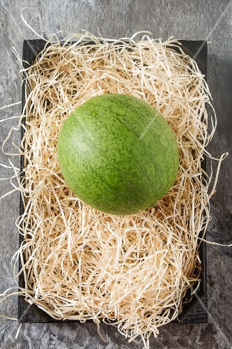 A watermelon on a bed of straw (seen from above)