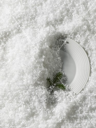 A plate with a fir twig in the snow