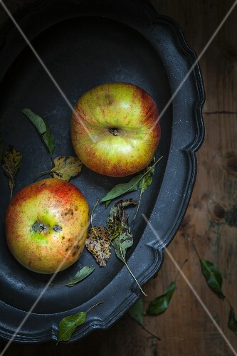 Two organic apples on a tray (seen from above)