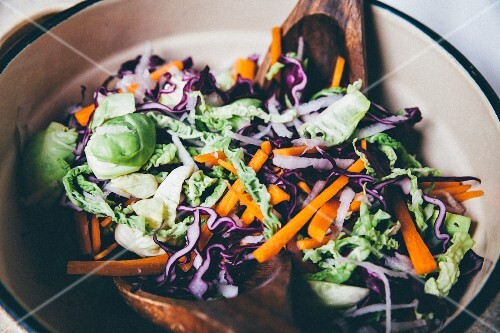 Red cabbage salad with carrots and Brussel sprouts