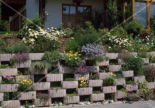 abgefangener hang mit bepflanzten bild kaufen friedrich strauss gartenbildagentur. Black Bedroom Furniture Sets. Home Design Ideas