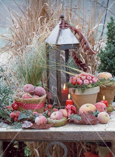 arrangement mit pfeln gr sern hedera efeu kerzen und windlicht im rauhreif bild kaufen. Black Bedroom Furniture Sets. Home Design Ideas