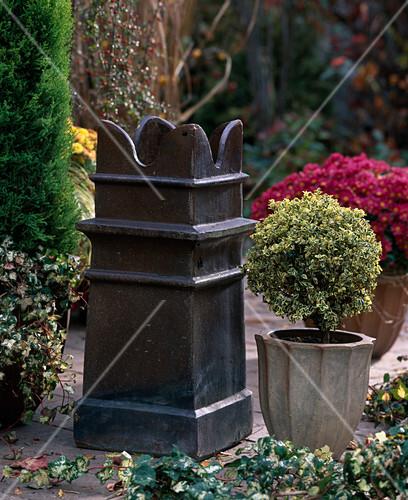 metalls ule mit hedera efeu buxus variegata buchs bild kaufen friedrich strauss. Black Bedroom Furniture Sets. Home Design Ideas