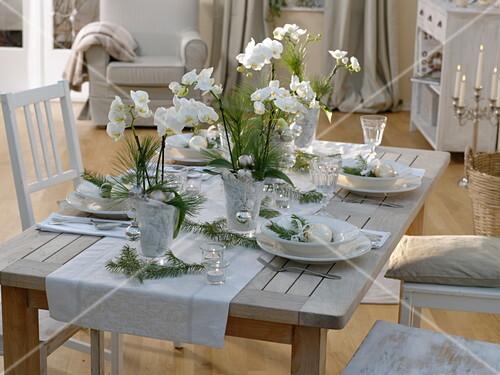 Weihnachtliche orchideen tischdeko in wei bild kaufen friedrich strauss gartenbildagentur - Orchideen tischdeko ...