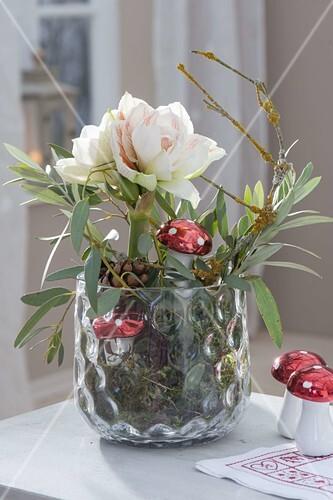 hippeastrum amaryllis ohne erde im glas mit moos dekoriert bild kaufen friedrich strauss. Black Bedroom Furniture Sets. Home Design Ideas