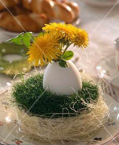 taraxacum officinalis l wenzahn im entenei im nest aus. Black Bedroom Furniture Sets. Home Design Ideas