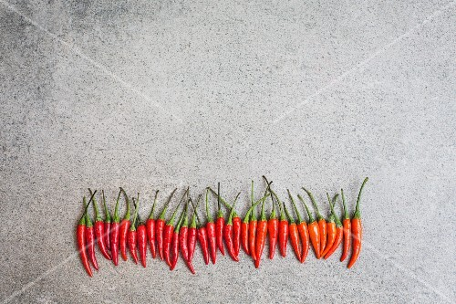 A row of fresh red chillis (seen from above)