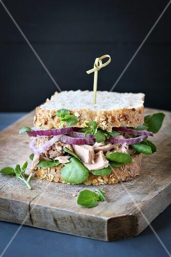 thunfisch sandwich mit roten zwiebeln und kresse bild kaufen 12262127 stockfood. Black Bedroom Furniture Sets. Home Design Ideas