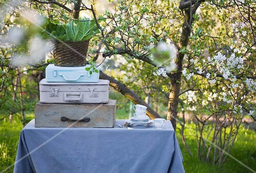 A garden table with a grey tablecloth, stacked suitcases, a pile of dishes and a basket full of rhubarb leaves