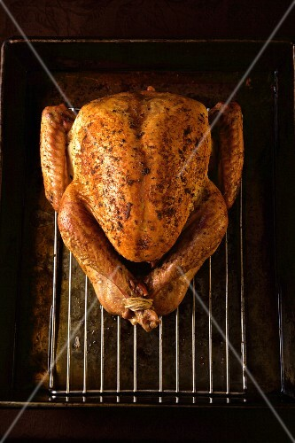 Whole baked turkey on a backing rack from above