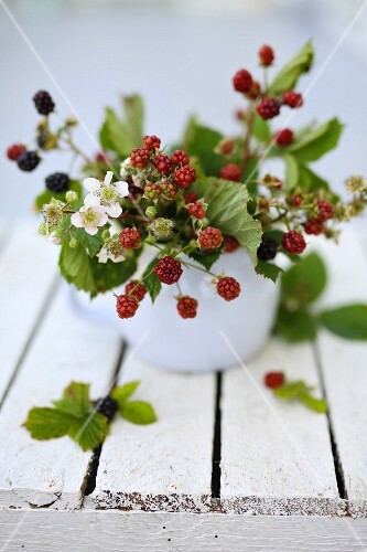 Vintage bouquet of berries