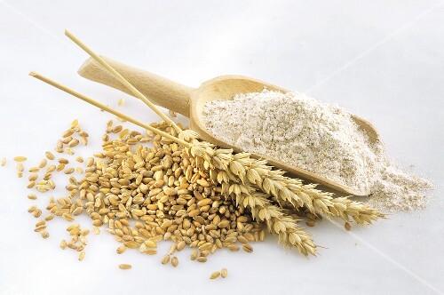 Whole Wheat Orzo Whole Foods