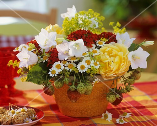 erdbeeren kamille frauenmantel glockenblumen und rosen. Black Bedroom Furniture Sets. Home Design Ideas