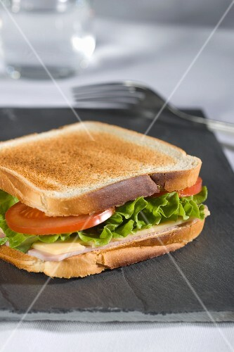 Toasted ham, cheese and tomato sandwich