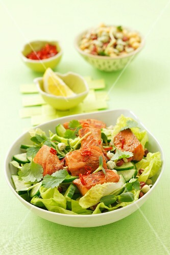 Salad of marinated salmon, cucumber, lettuce, coriander and chilli