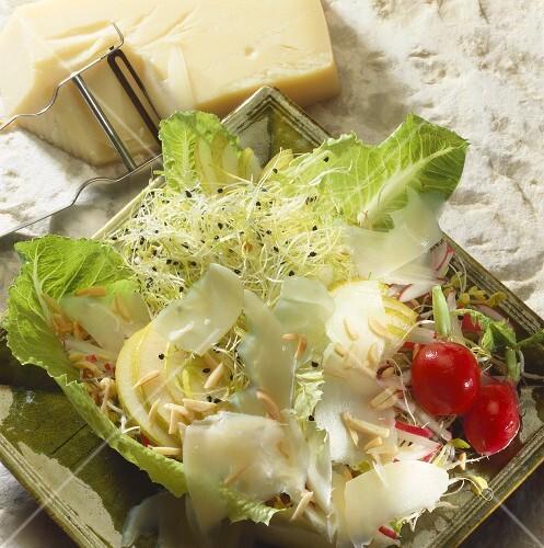 gemischter salat mit birnen k se und sprossen bild kaufen 336243 stockfood. Black Bedroom Furniture Sets. Home Design Ideas