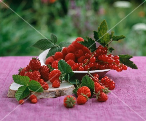 An arrangement of red berries on a table in the open air
