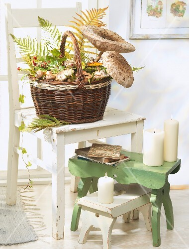 Wicker basket filled with mushrooms on white chair