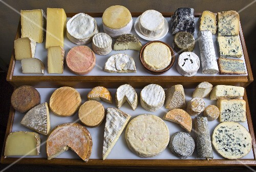 A tray of various types of cheese