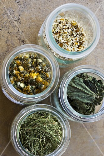 Camomile, dandelions, stinging nettles, horsetail - natural products for bio-dynamic use in winegrowing