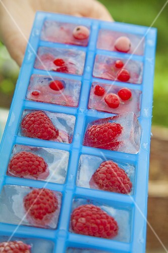 Red currant and raspberry ice cubes