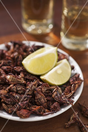 Chapulines (fried grasshoppers, Mexico)