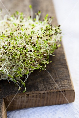Alfalfa sprouts on a wooden board