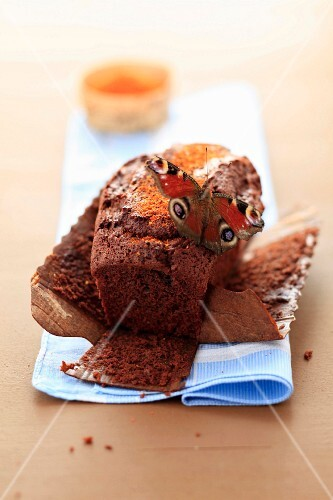 Butterfly on a spicy chocolate cake