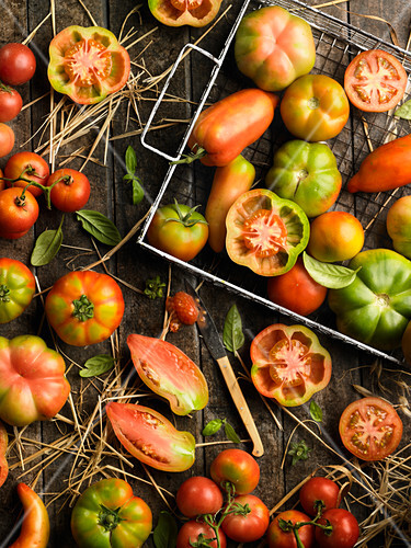 viele verschiedene tomaten bild kaufen 60357977 stockfood. Black Bedroom Furniture Sets. Home Design Ideas