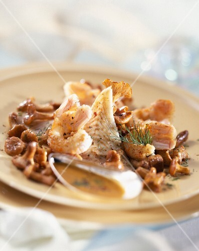 Fillet of cod and prawns with chanterelles