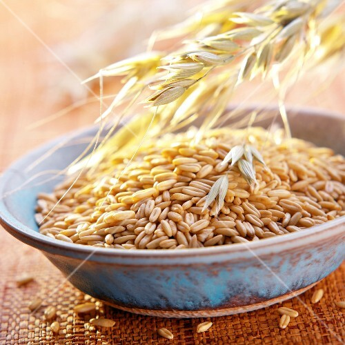 Oat grains and sheaf of oats