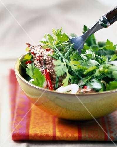 Spicy beef salad with herbs