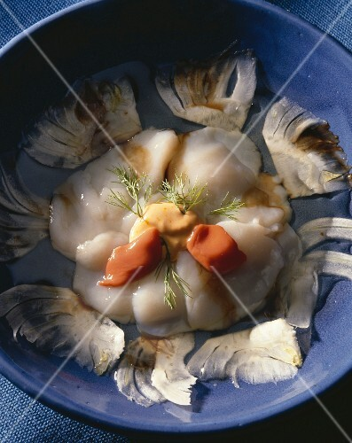 Scallop carpaccio with fennel