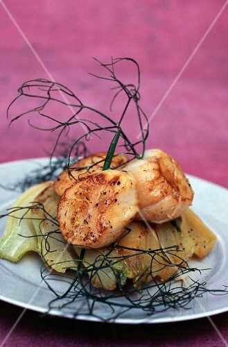 Pan-fried scallops and fennel