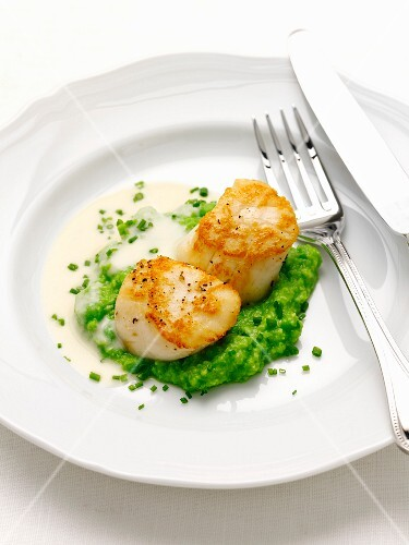 Pan-fried scallops with mashed peas