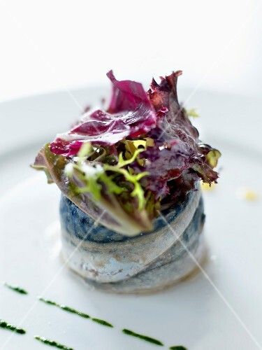 Rollmops with mixed lettuce salad