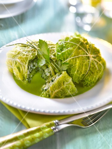 Cabbage leaves stuffed with whiting and sorrel, green parsley
