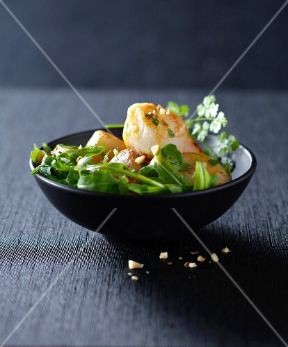 Rocket lettuce with scallops
