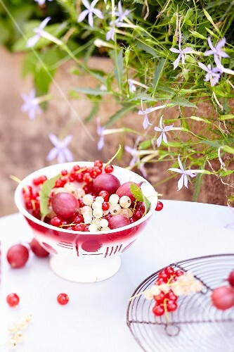 A bowl of wild fruits outside