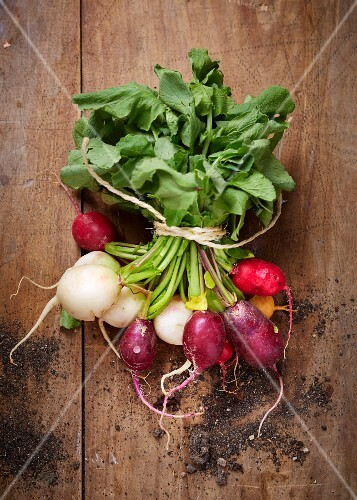 Bunch of multicolored radishes