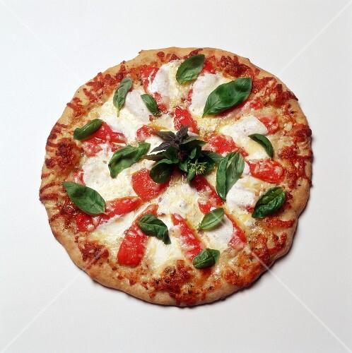pizza mit paprika und basilikum draufsicht bild kaufen 661515 stockfood. Black Bedroom Furniture Sets. Home Design Ideas