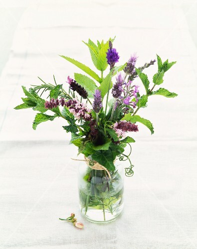 Fresh Herb Bouquet in a Vase