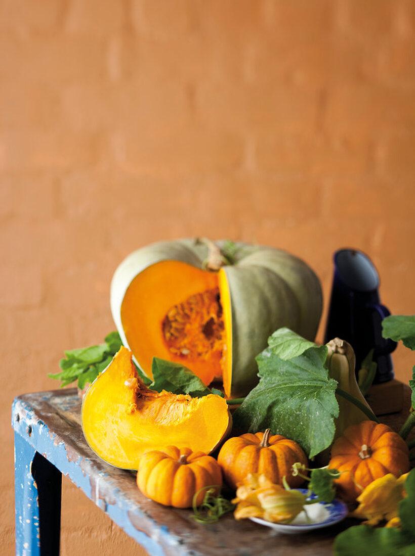 Pumpkin Potential