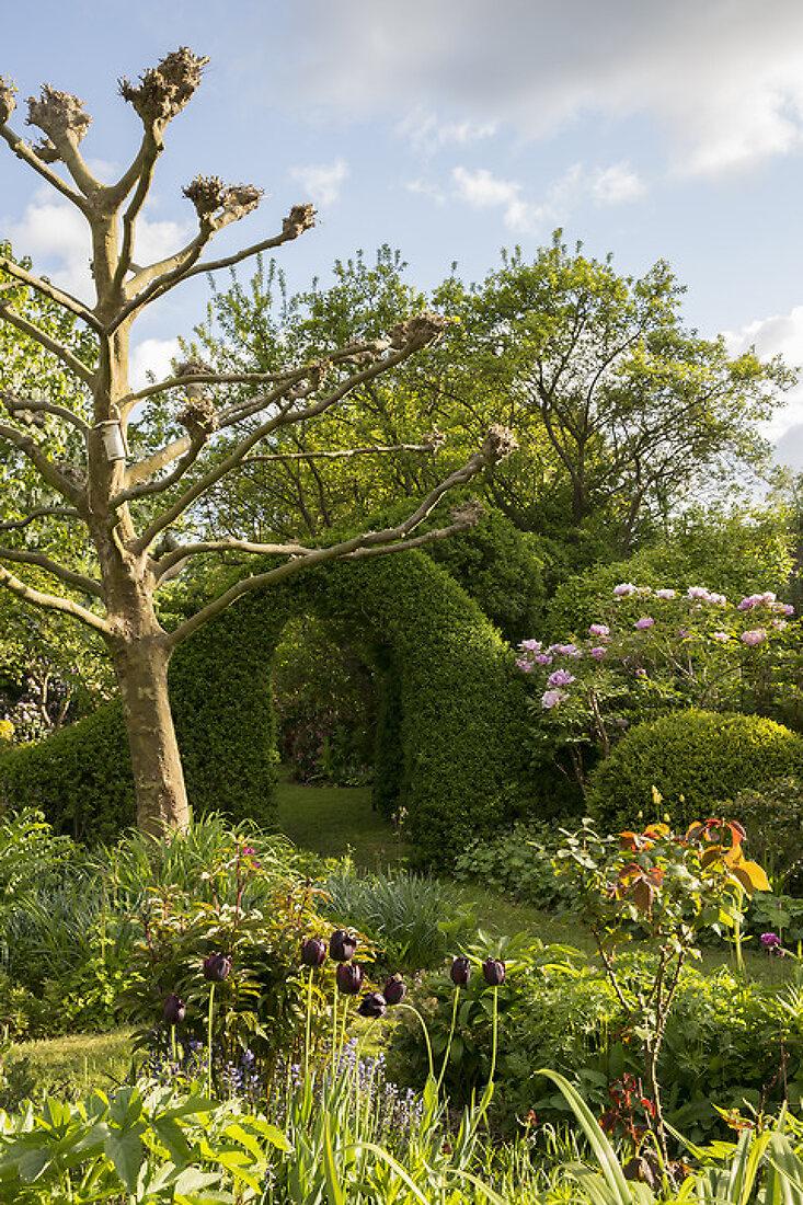 The Awarded Garden