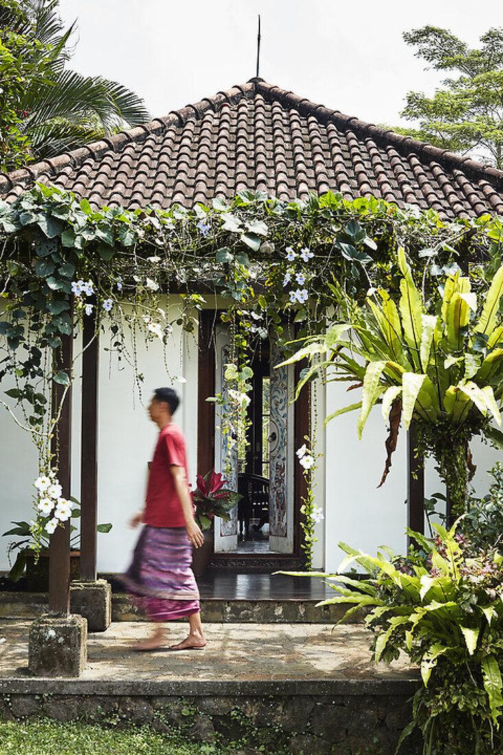 A Danish Dream Home in Bali