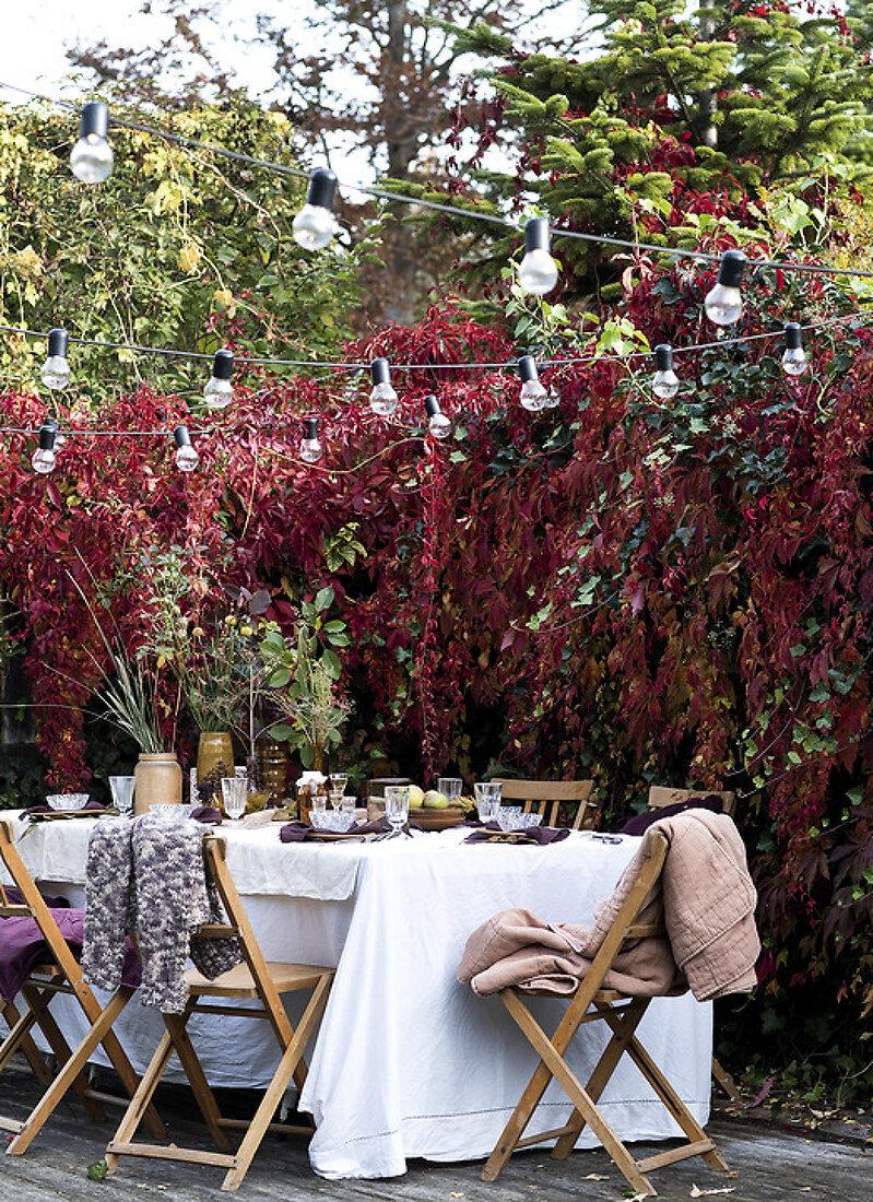 Prepare an Autumn Gathering in the Garden