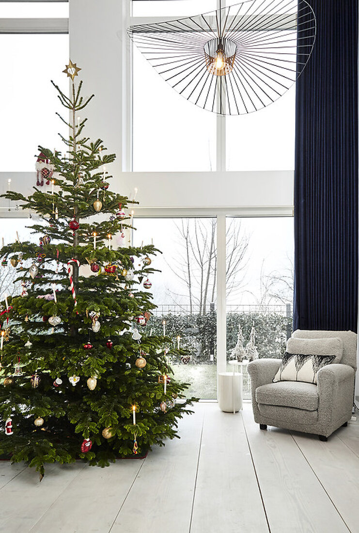 Modern Christmas in Gold and Blue