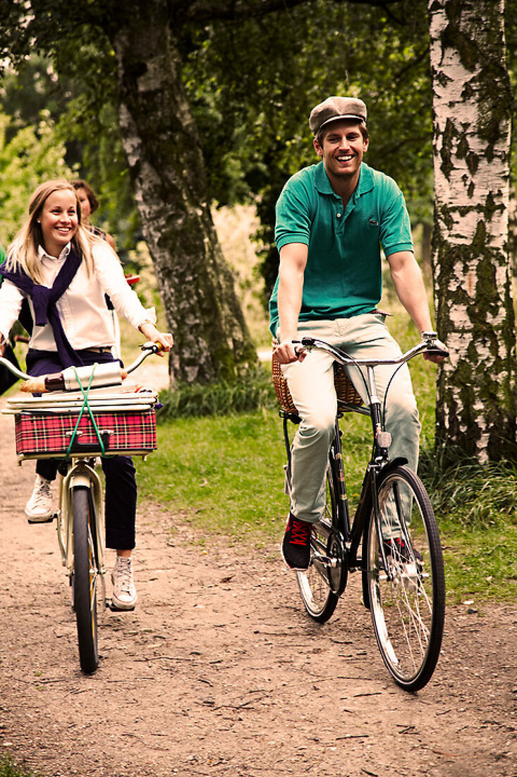 Picnic in a Bicycle Basket
