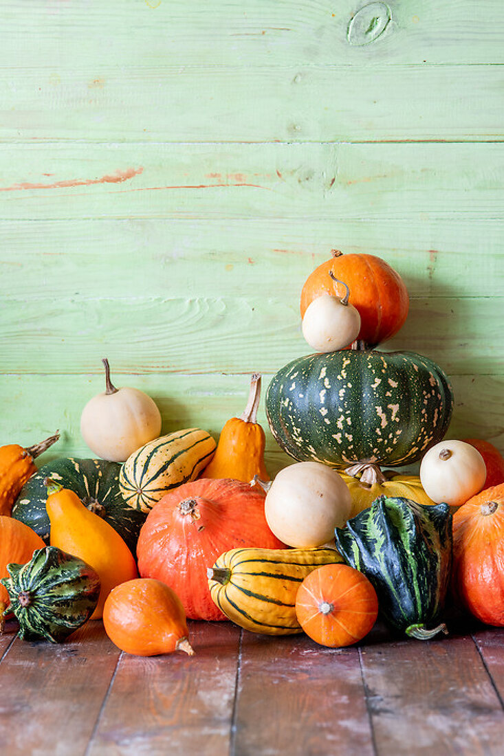 From the Pumpkin Patch