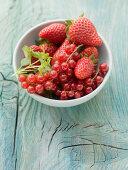 Bounty of Berries